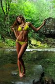 Sexy young woman posing in designer bikini at exotic location of mountain river