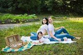 Family Picnic In A Park