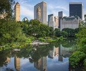 NEW YORK CITY - AUGUST 23: People enjoy central park under the skyline along Central Park South Augu