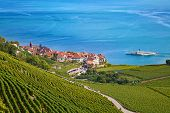 Vineyards of the Lavaux region over lake Leman (lake of Geneva)