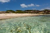Idyllic Rustic Tropical Caribbean Beach Antigua