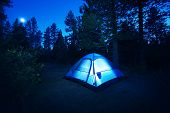 stock photo of tent  - Forest Camping  - JPG