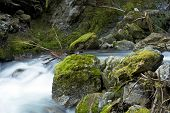 Cascades Mountains Creek