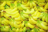 image of bunch bananas  - Closeup of yellow banana bunch in fruit market