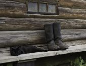 Black cat and tarpaulin boots