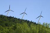 Three Wind Mills