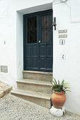 Dark blue wooden door, doorbell and flower pot