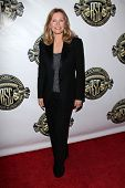 LOS ANGELES - FEB 1:  Cheryl Ladd at the 28th American Society of Cinematographers Awards at Grand B