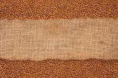 Granulated Coffee Lying On Sackcloth