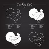 stock photo of giblets  - Turkey meat cut scheme on blackboard style  - JPG