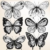 Collection Of Vector Hand Drawn Detailed Butterflies For Design