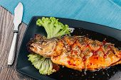 Healthy Sea Bass