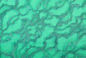 Green Lace On Green Spandex