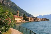 Picturesque Lakeside Promenade With Oleander, Garda Lake