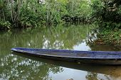 River Boat in the Jungle