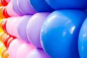 Close Up Colorful Balloons