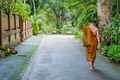 Monk Walking