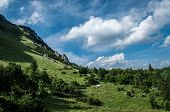 stock photo of snitch  - Green meadow and blue sky on Slovakia - JPG