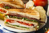 stock photo of tomato sandwich  - Turkey and Bacon Club Sandwich with Lettuce and Tomato - JPG