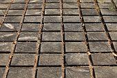 cracked paving wooden walkway
