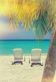 Caribbean Beach Chairs And Palm