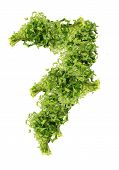 parsley seven digits