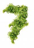 parsley seven digits
