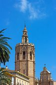 Valencia Cathedral Bell Tower and palm trees.