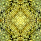 Composit Of Background Pattern Made Of Great Marquis Butterfly Wing Skin Texture