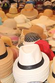 Trilby hats