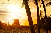 stock photo of lifeguard  - Miami South Beach sunrise with lifeguard tower and palm tree