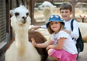 Children and animals in the zoo pic.