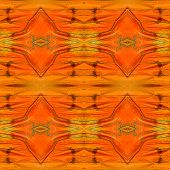 Great Orange Butterfly's Wings Consoliated As The Great Seamless Background Patterns