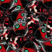 Pile Up Of Red Butterfly In To The Greatest Of Exotic Background Texture