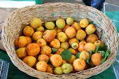 Apricots at bazaar