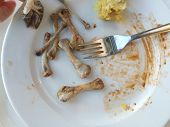 Dirty Plate With Meat Bones After The Meal Is Finished.