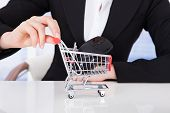 Businesswoman Pushing Shopping Cart With Computer Mouse