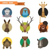 pic of hyenas  - Animal avatars set with flat design - JPG