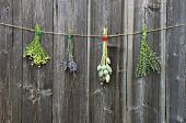 stock photo of hyssop  - medical herbs flowers bunch and poppy heads on old wooden wall