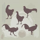 Hen And Rooster Silhouette On Grunge Background. Vector