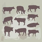 Cow Set Silhouette On Grunge Background. Vector