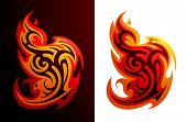 Fire flame variations