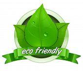 Eco friendly label. 100 percent natural badge. Vector illustration