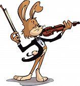 Rabbit playing violin
