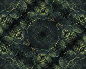Nature Collage Digital Pattern