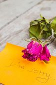 stock photo of condolence  - Rose of condolences on the wooden table - JPG