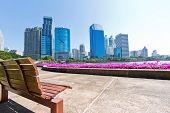 Bangkok Cityscape garden