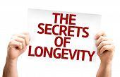 The Secrets of Longevity card isolated on white background