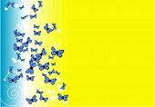 butterfly background-vector