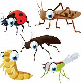 foto of locusts  - vector isolated cartoon cute animals set - JPG
